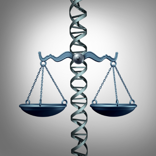Bioethics and the Law Today: A Panel Discussion header image